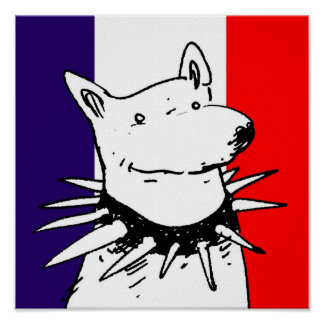 france flag and white dog with spike collar poster