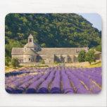 France, Gordes. Cistercian monastery of