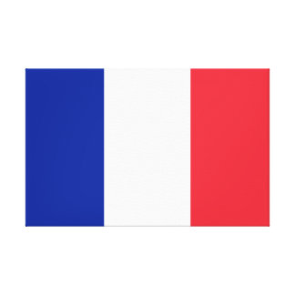 France National World Flag Canvas Print