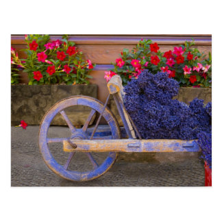 France, Provence, Sault. Old wooden cart with Postcard