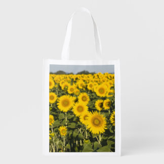 France, Provence, Valensole. Field of Reusable Grocery Bag