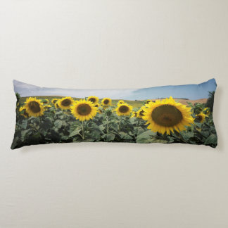 France Provence, View of sunflowers field Body Pillow