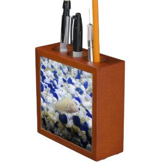 Francis the albino cat fish desk organizer