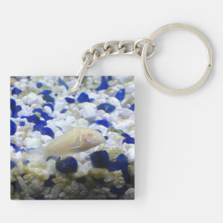 Francis the albino cat fish Double-Sided square acrylic keychain