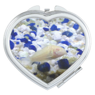 Francis the albino cat fish makeup mirror