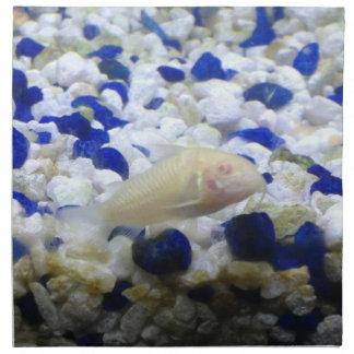 Francis the albino cat fish napkin
