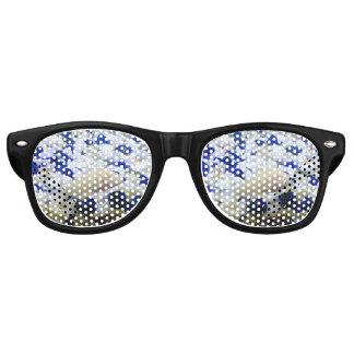 Francis the albino cat fish party sunglasses