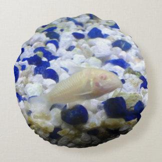 Francis the albino cat fish round pillow