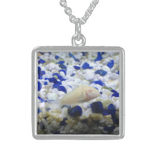 Francis the albino cat fish sterling silver necklace