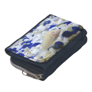 Francis the albino cat fish wallets