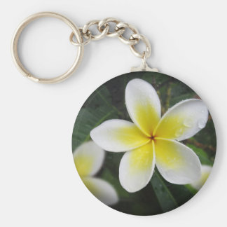 Frangipani And Raindrops Keyring Basic Round Button Keychain