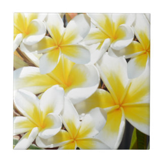 Frangipani_Bouquet, Ceramic Tiles