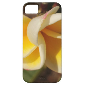 Frangipani Flower Case For The iPhone 5