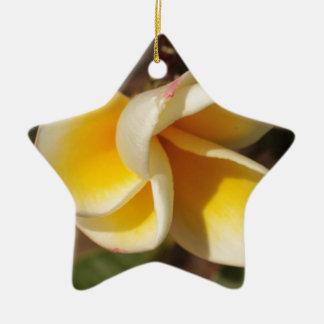 Frangipani Flower Ceramic Ornament