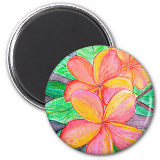 Frangipani Flowers Magnet
