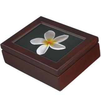 Frangipani Keepsake Box