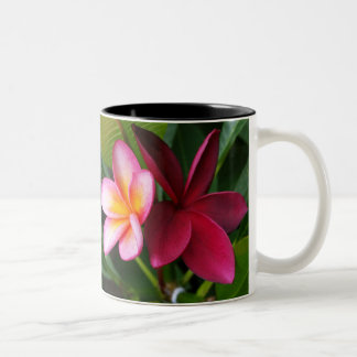 Frangipani Mug: Darwin Sunset & Hilo Beauty Two-Tone Coffee Mug
