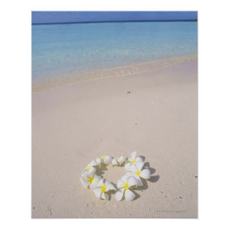 Frangipani on the beach poster