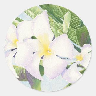 Frangipani Round Stickers