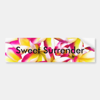 Frangipani temple flower bumper sticker