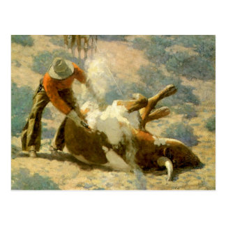Frank T. Johnson Western Art Branding A Steer Postcard