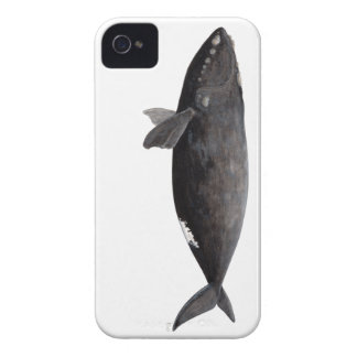 Frank whale of Atlantic iPhone 4 Case-Mate Cases