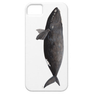 Frank whale of Atlantic iPhone 5 Covers