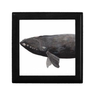 Frank whale of Atlantic Keepsake Box