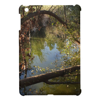 Franklin Canyon Park Lake 4 iPad Mini Cases