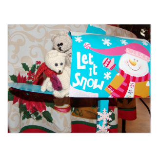 Franscious and Lennart Let It Snow Mailbox Postcard