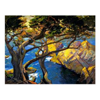 Franz Bischoff - Cleft-Born Trees, Monterey Postcard