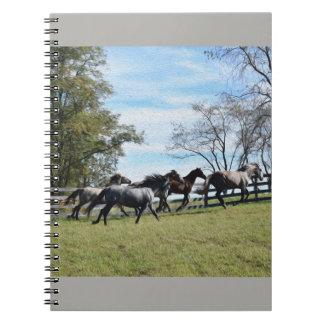 "'Free"" Fine Art Notebook"