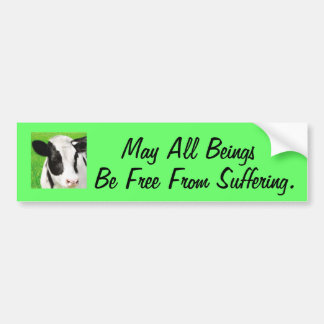 Free From Suffering Car Bumper Sticker