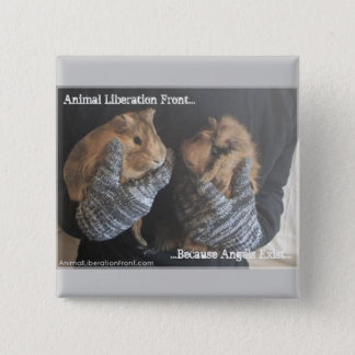 Free Guinea Pigs 2 Inch Square Button