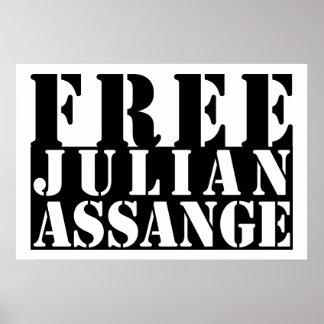 FREE JULIAN ASSANGE POSTERS