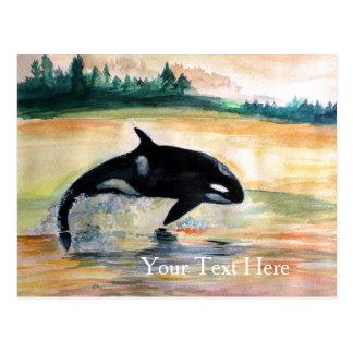 Free Orca Whale Postcard