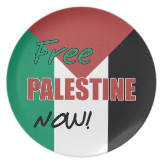 Free Palestine Now Palestinian Flag Plates