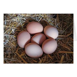 Free Range Chicken Eggs Card