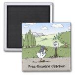 Free-Roaming Chicken Funny Chicken Cartoon