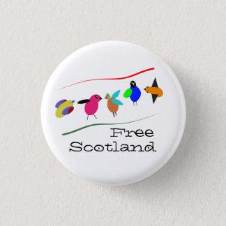 Free Scotland Cartoon Bird Pinback 1 Inch Round Button