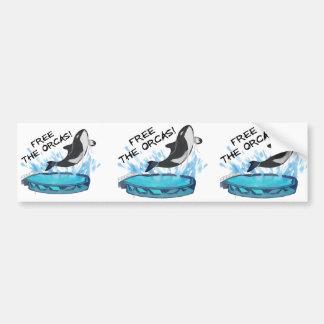 FREE THE ORCAS! BUMPER STICKER