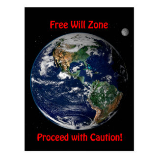 Free Will Zone Postcard