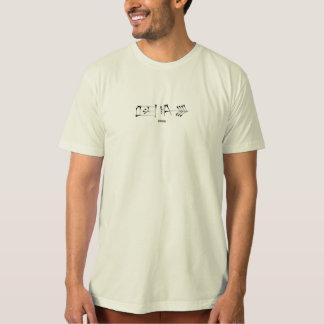 Freedom In Cuneiform T-Shirt