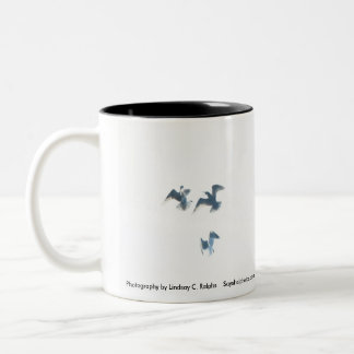 Freedom in flight mug