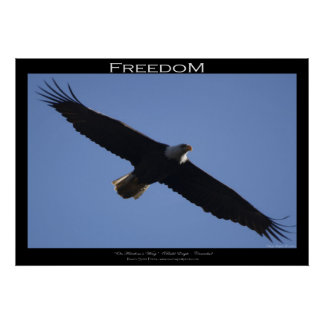 FREEDOM Motivational Poster