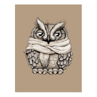 Freezing Owl Postcard
