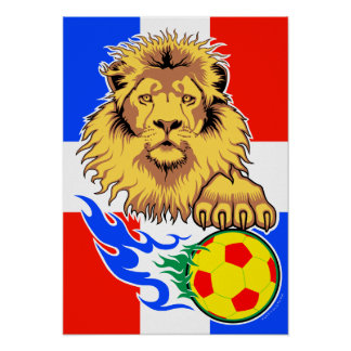 French African Soccer Lion Poster