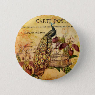 French Botanical orchid modern vintage peacock 2 Inch Round Button