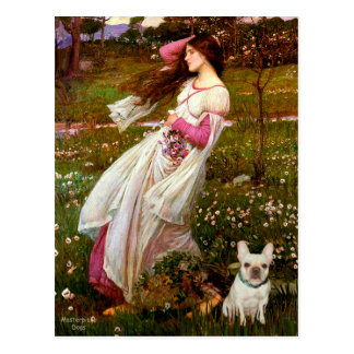 French Bulldog 1 - Windflowers Postcard