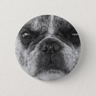 french-bulldog 2 inch round button